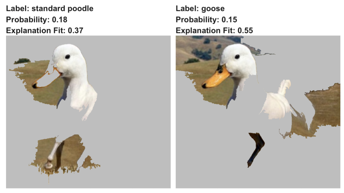 LIME for two predictions ('standard poodle' and 'goose') obtained by the VGG16 network with ImageNet weights for the half-duck, half-horse image. TODO: fix apostrophes!