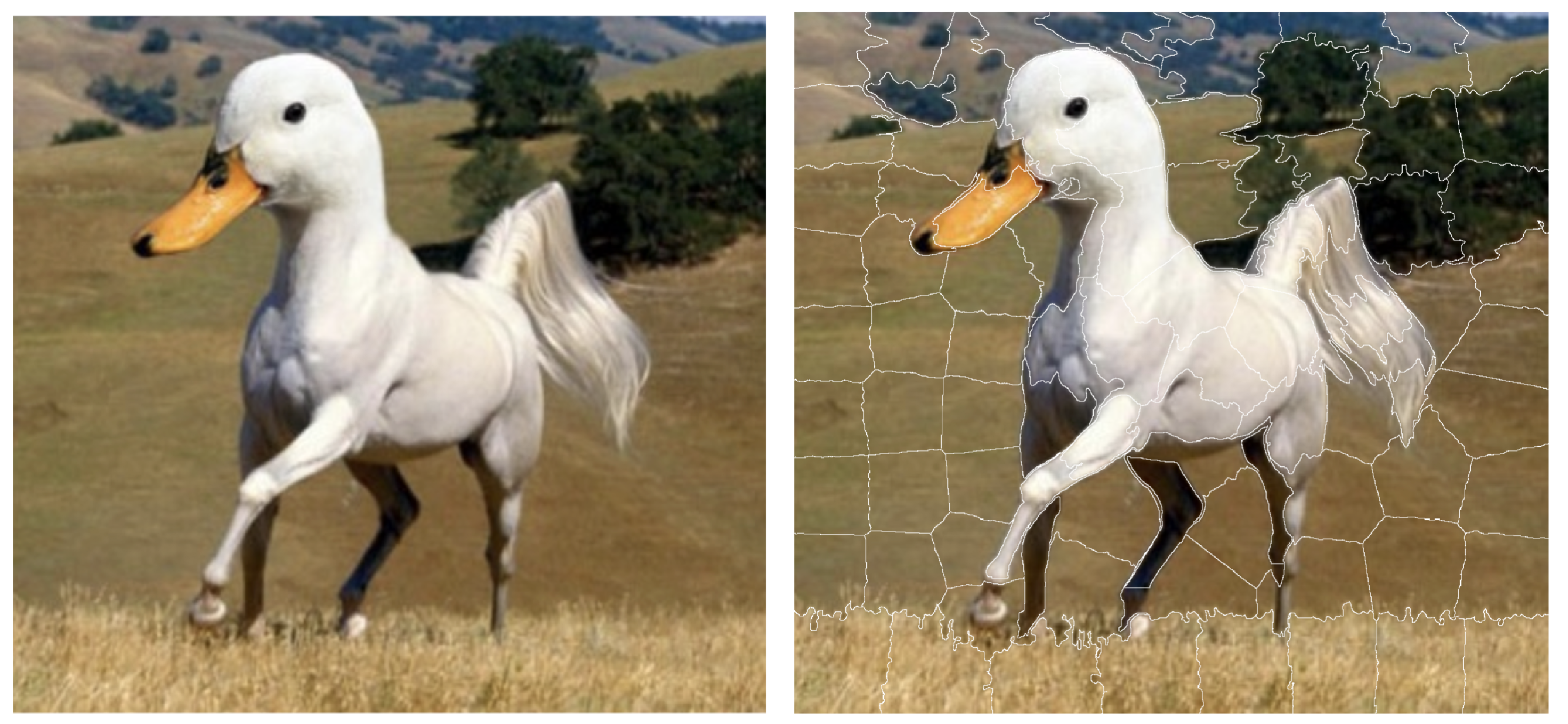 The left-hand-side panel shows an ambiguous picture, half-horse and half-duck (source Twitter). The right-hand-side panel shows 100 superpixels identified for this figure.